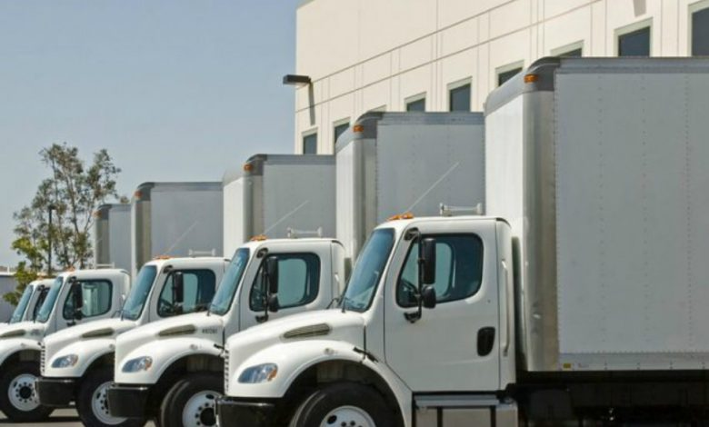 Photo of Guide 101: Selecting A Reliable Long-Distance Moving Company In Florida
